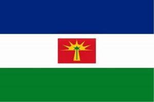 Bandera Estado Barinas