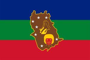 Bandera Estado Amazonas