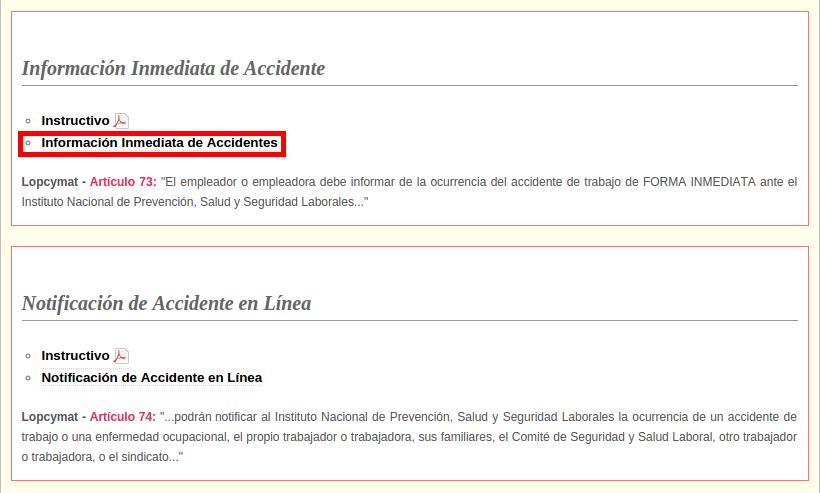 Registro Inmediato de Accidente