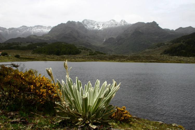 Laguna Mucubají Mérida