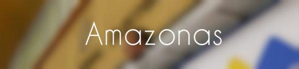 Resultados parlamentarias Amazonas