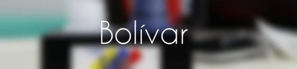 Resultados parlamentarias Bolivar