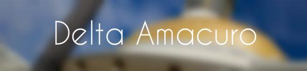 Resultados parlamentarias Delta Amacuro