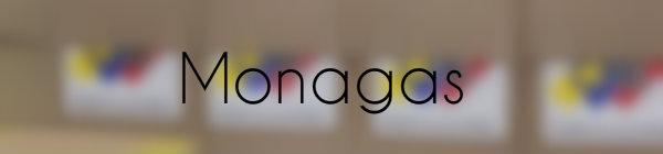 Resultados parlamentarias Monagas