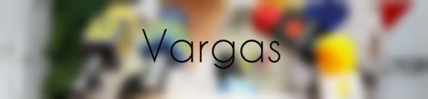 Resultados parlamentarias Vargas