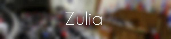 Resultados parlamentarias Zulia