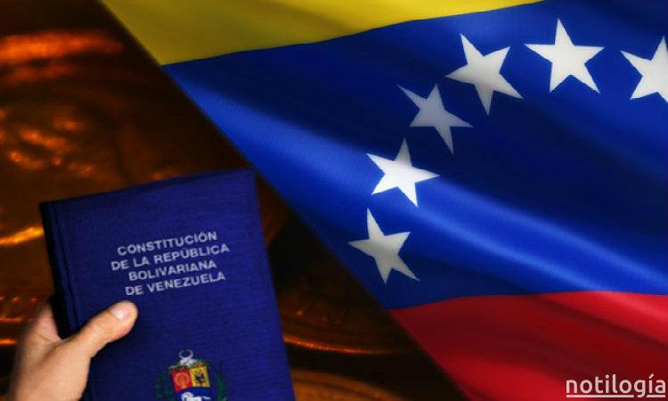 Artículo 233 de la Constitución Bolivariana de Venezuela